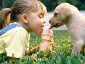educar-cahorros-perros