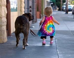 paseando-perro